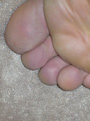 Toes (Brave Heart) Tags: feet closeup foot photo toes toe skin body picture 2006 lookdown barefoot barefeet bodyparts myfeet myfoot mytoes humanskin flickrtoes flickrfeet flickrfoot toesupclose