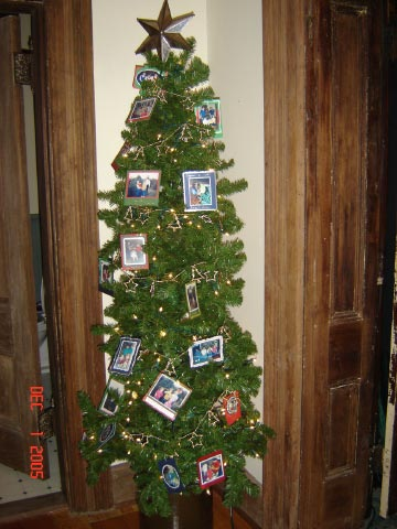 kids' pics tree