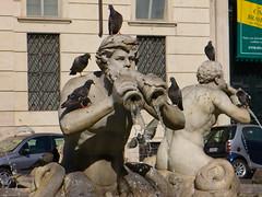 fontaine navona