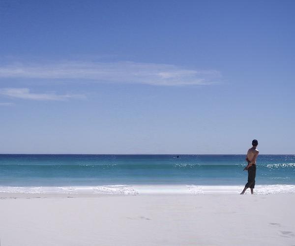 a man, a whale, a beach - resized