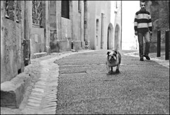 MAN AND DOG, PERIGUEUX (mfogiel) Tags: planar 8514 nikon thelittledoglaughed film agfa zeiss scala fm3a zf