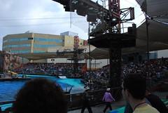 Activity Trip Sept 2007 311 (burndog) Tags: pool movie fire la tour ride moviesets kingkong rides universal studios universalstudios backdraft omnie omniehotel