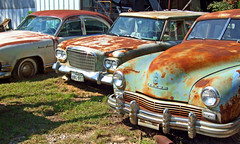 """Used Cars"" (Texas Finn) Tags: old blue roof sun reflection green classic cars colors sedan vintage movie star rust texas rusty headlights grill used rusted parked studebaker kaiser fraser windshields bumpers sedans sparkel instantfave"