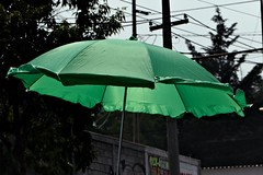 Eco umbrella - by Pulpolux !!!