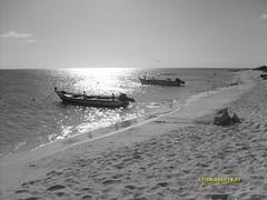 isla de crasky (gnaghi) Tags: bw blancoynegro blanco los negro roques