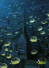 Mole Antonelliana con pesci gialli