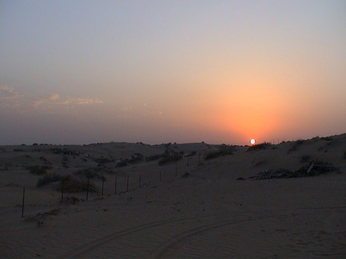The Camp 0 Desert Sunset 0