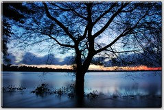 Black tree in silky river (picazam) Tags: blue sunset sky black tree river alone slow smooth vivid lifestyle shutter bangladesh bir silky azam faridpur picazam sidraidphotoexhibition2008