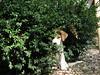... (A.T.E.F.E.H) Tags: dog worry سگ هاپو عاطفه عاطی شهشهانی
