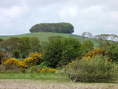 wardlaw hill fort