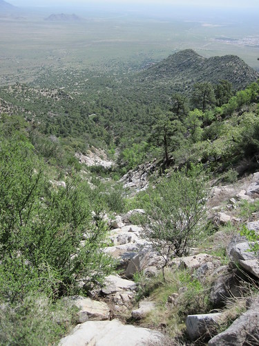 Looking Down to the Tularosa Basin