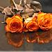 Les trois roses.