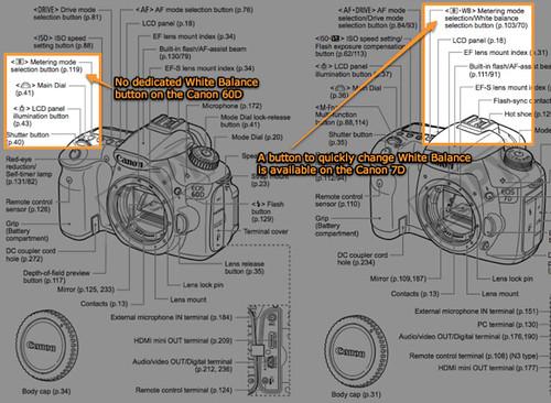 No White Balance button on the Canon 60D, vs White Balance button on the Canon 7D