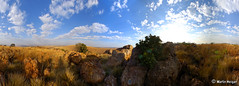 Cradle of Humankind - 360° Panorama