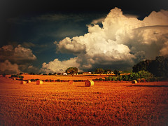 After the Harvest (ToniVC) Tags: summer field canon spain bravo europe wheat harvest catalonia girona powershot a640 goldenphotographer tonivc