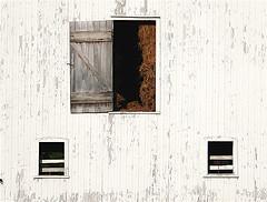 Barn Door (marylea) Tags: field delete10 barn rural delete9 delete5 delete2 sheep delete6 michigan farm delete7 country save3 delete8 delete3 delete delete4 save save2 portfolio