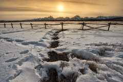Tetons and fence (kern.justin) Tags: park orange sun snow mountains west fence march nikon grand national american wyoming tetons d700 kernjustin wwwthewindypixelcom