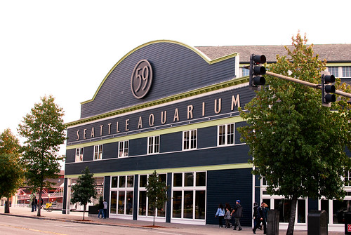 acquarium-0204