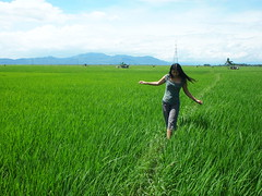 Walking on the green! (El Trinidad) Tags: green pen magazine philippines olympus uno laguna ricefield pagsanjan ep2 olympusep2 eltrinidad
