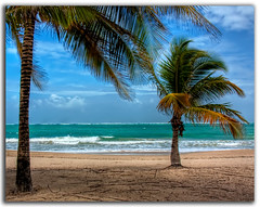 Isla Verde Beach (Chad McDonald) Tags: ocean travel blue vacation usa tree verde green beach water landscape puerto sand san waves juan carribean palm rico romantic serene isla altlantic