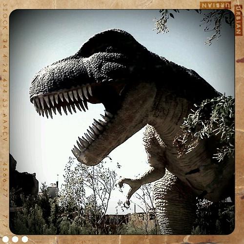 Robotic Dinosaur Museum - T. Rex