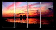 sun dried tomatoes (Seth Wood) Tags: sunset reflection preserve springbrook
