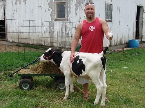 Doing farm chores