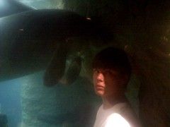 The Manatee Whisperer (1)