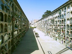 barcelona (indrarado) Tags: barcelona friedhof grave graveyard urn casket grab urna urne urnas urnengrab