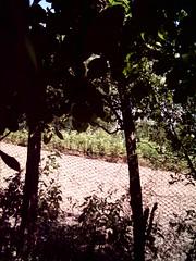 DSCI0020 (iulia_gabry) Tags: outdoors vilage falfani