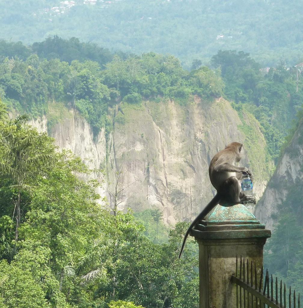 Sumatra-Bukittinggi (117)