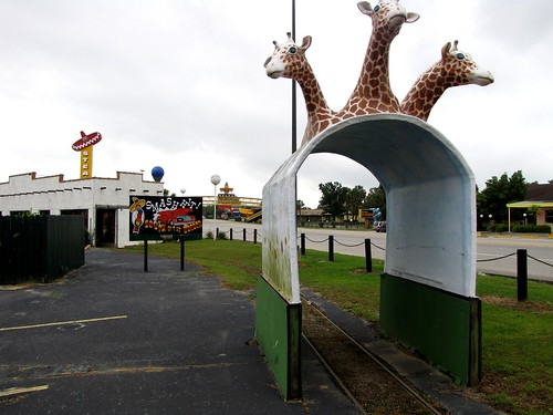 WTF giraffe tunnel