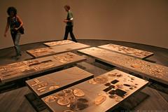 documenta 12 | Sheela Gowda / Collateral | 2007 | Neue Galerie