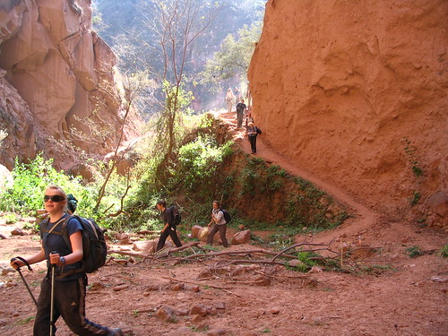 Trekking en las Yungas por Ariel Belmonte.