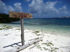 Venezuela - Los Roques (danieleb80) Tags: mare venezuela caribbean spiaggia losroques caraibi caribbeanbeach caribbeantrip caribbeanisland beachparadise caribbeanworld esparqui marecaraibico arcipelagocaraibico thecaribbeansea isolecaraibiche