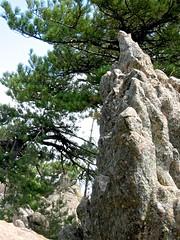 Figure de roche sur le chemin de Paliri après Bocca Finosa