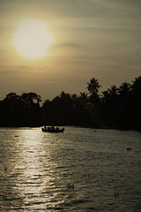 Its dusk in kerala {EXPLORED} (VinothChandar) Tags: cruise sunset sea india lake tree nature water birds silhouette canon landscape evening coast boat fishing fisherman dusk turtle jetty houseboat kerala palm canals coastal rivers kingfisher western otter boating 5d arabian backwaters cruises darter freshwater ghats alleppey markii waterscape malabar 24105 alappuzha canoneos5dmarkii