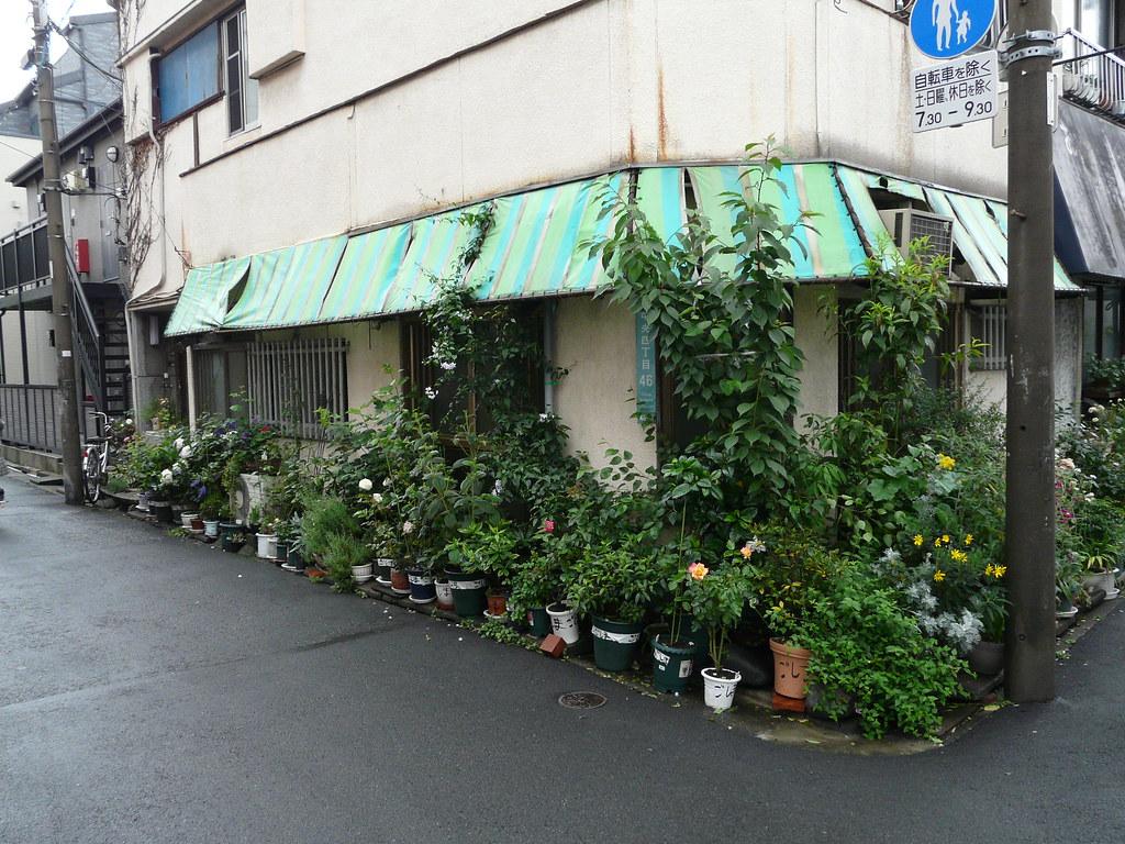 Pot Plant Corner in Nakano