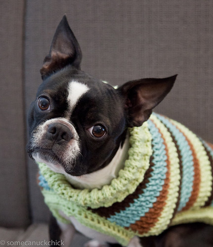 Stella Bella Blue, modelling a 70s-inspired Ribbed Turtleneck Retro Cable Sweater