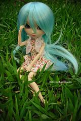 Beauty*2 (M. Ribeiro ) Tags: cute bigeyes doll greeneyes pullip boneca custom bluehair beauty2 xiaofan jiali junplanning rewigged outdoorshoot pullipxiaofan ladytronmusic
