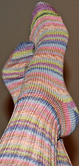 Simple socks in Wool Cotton Blend