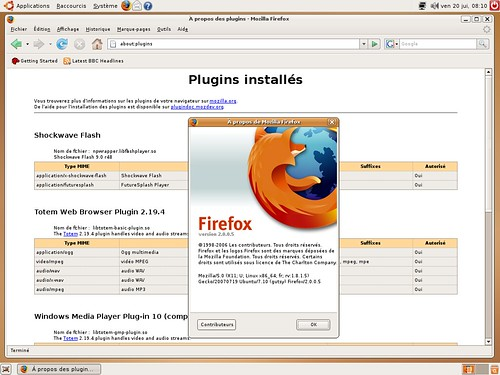 Le plugin flash sous Linux AMD64 !