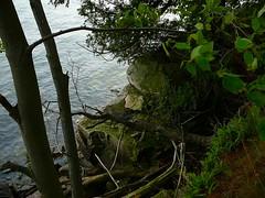 P1030316.jpg (airwaves1) Tags: 1000islands stlawrenceriver july282007 yeoisland