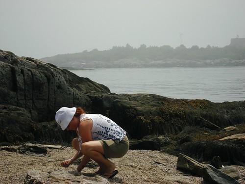 D on the Rocks.JPG