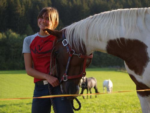 witziges Pferd