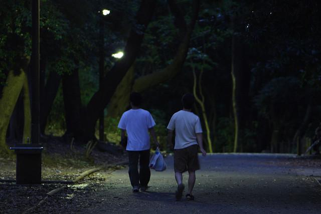 薄闇の公園小道