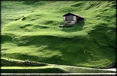 green housing (mario bellavite) Tags: verde green casa montana strada shot swiss best explore svizzera pietra vals prato architettura abitare biologica ecologica spontanea sostenibile ecocompatibile mariobellavite