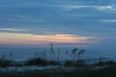 Family_Alligator Point_9926 (dougflyer) Tags: familybeach