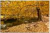 (Antonio Carrillo (Ancalop)) Tags: park parque autumn españa canon hojas spain europe tokina murcia otoño marques fuentes 1224mm caravaca ancalop