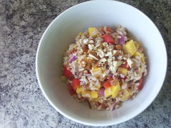 Wild Rice and Mango Salad (veganbackpacker) Tags: food salad vegan mango vegetarian redpepper redonion wildrice veganfood
